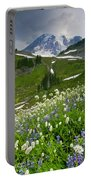 Lupine Storm Portable Battery Charger