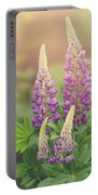 Lupine Sunrise Portable Battery Charger