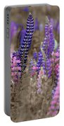 Lupins 2016 28a Portable Battery Charger