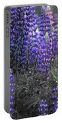 Lupins 2016 35a Portable Battery Charger