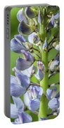 Lupinus Polyphyllus Portable Battery Charger