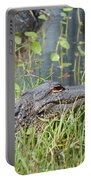 Lurking In The Grass Portable Battery Charger
