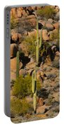 Lush Arizona Desert Landscape Portable Battery Charger