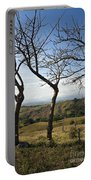 Lush Land Leafless Trees Iv Portable Battery Charger