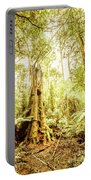 Lush Tasmanian Forestry Portable Battery Charger
