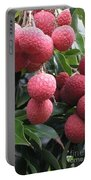 Lychee Portable Battery Charger