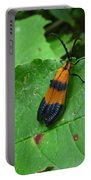 Lycomorpha Moth Portable Battery Charger