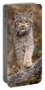 Lynx Kit Portable Battery Charger