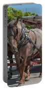 Mackinac Island Horse Carriage Portable Battery Charger