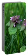 Macro Blooming Clover Portable Battery Charger