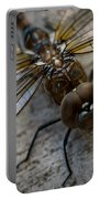 Macro Dragonfly Portable Battery Charger