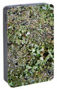 Macro Forest  Portable Battery Charger