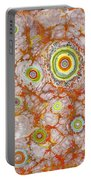 Macrocosm And Microcosm Portable Battery Charger