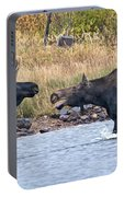 Mad Mamma Moose Portable Battery Charger