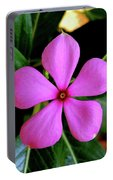Madagascar Periwinkle Portable Battery Charger