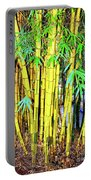 City Park Bamboo Grass Portable Battery Charger