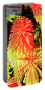 Madeira Funchal  Tritoma, Red Hot Poker, Torch Lily, Poker Plant Portable Battery Charger