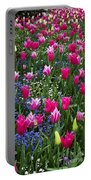 Magenta And White Tulips Portable Battery Charger
