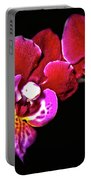 Magenta Phaleonopsis Orchid Portable Battery Charger