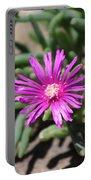 Magenta Purple Desert Moss Rose Portable Battery Charger