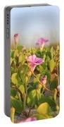 Magic Garden Portable Battery Charger