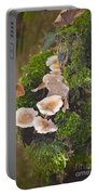 Magical Forest Portable Battery Charger