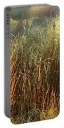Magical Light On The Marsh Portable Battery Charger