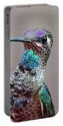 Magnificent Hummingbird Male Portable Battery Charger