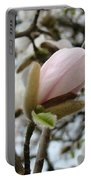 Magnolia Flower Pink White 19 Magnolia Tree Spring Art Portable Battery Charger