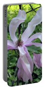Magnolia Soulangeana Portable Battery Charger