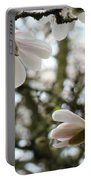 Magnolia Tree Flowers Pink White Magnolia Flowers Spring Artwork Portable Battery Charger