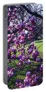 Magnolia Tree Gettysburg Pa Portable Battery Charger