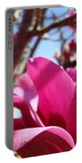 Magnolia Tree Pink Magnoli Flowers Artwork Spring Portable Battery Charger