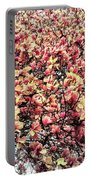 Magnolias In Bloom Portable Battery Charger