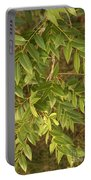Mahogany Leaves On A Branch Portable Battery Charger