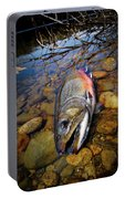 Maine Brookie Portable Battery Charger