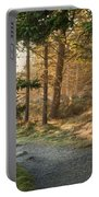 Maine Forest At Dusk Portable Battery Charger