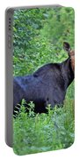Maine Moose Portable Battery Charger