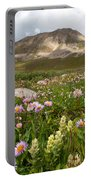 Majestic Colorado Alpine Meadow Portable Battery Charger