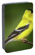 Male American Golden Finch On Twig Portable Battery Charger