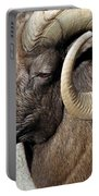 Male Bighorn Sheep Ram Portable Battery Charger