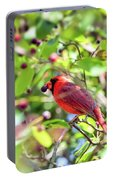 Male Cardinal And His Berry Portable Battery Charger by Kerri Farley