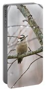 Male Downey Woodpecker Portable Battery Charger
