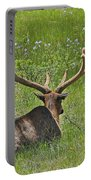 D10270-male Elk  Portable Battery Charger