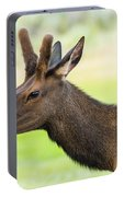 Male Elk Portable Battery Charger