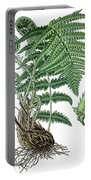 male fern, Dryopteris filix-mas Portable Battery Charger
