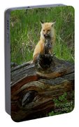 Male Fox-signed   #3569 Portable Battery Charger