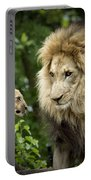 Male Lion And Cub Portable Battery Charger
