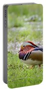 Male Mandarin Duck At Black Mountain Portable Battery Charger