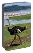 Male Ostrich Portable Battery Charger